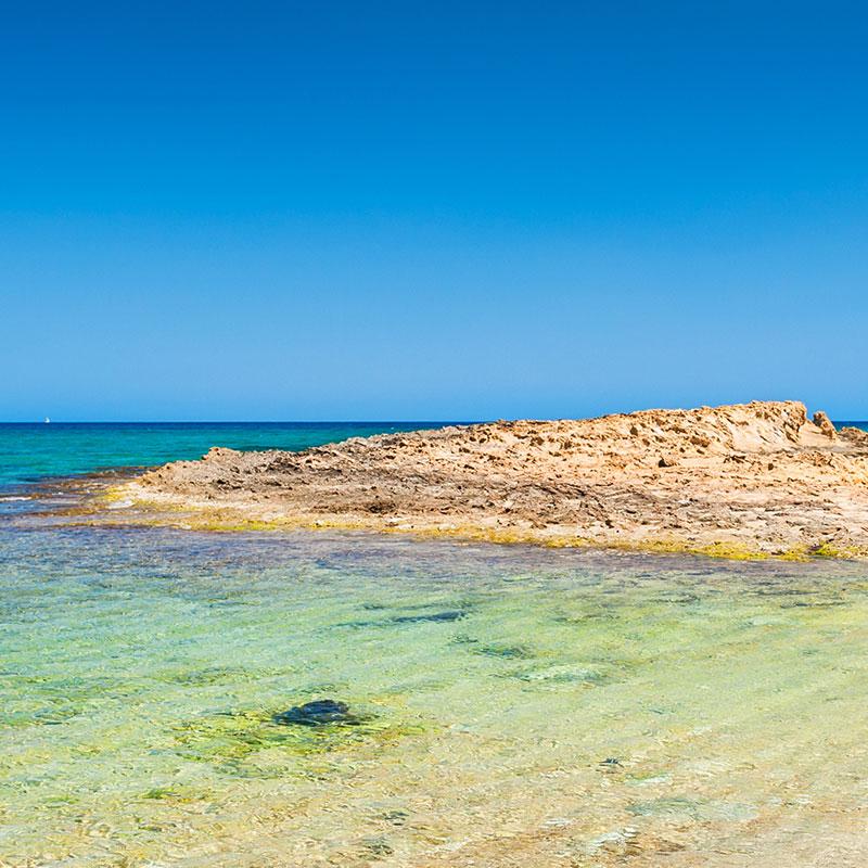 Kreta Karte Stalis.Alexander Beach Hotel Village 5 Star Resort Malia Hotel In Crete